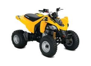 BRP Can-Am DS 250 (2019 м.г.)
