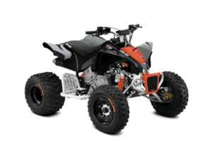 BRP Can-Am DS 90 X (2019 м.г.)